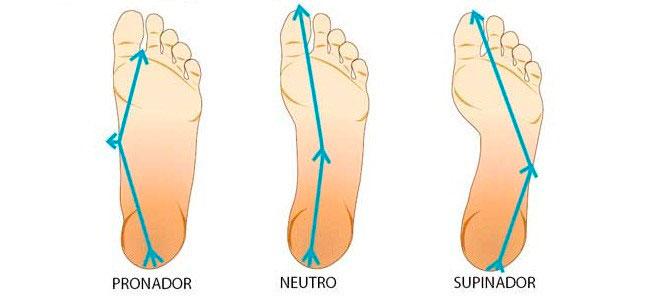 el-pie,-cenicienta-del-cuerpo-humano Cada día vemos en consulta hombres y mujeres con graves alteraciones en sus caderas, rodillas y pies, como consecuencia de muchos años de andar de manera incorrecta, con calzado incorrecto y en condiciones de trabajo incorrectas